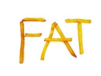 fatfries