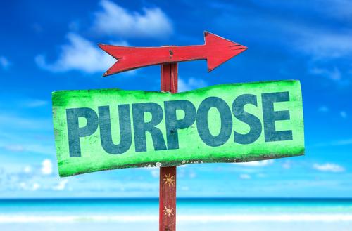 purpose4.jpg